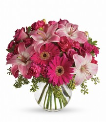 A Little Pink Me Up from Schultz Florists, flower delivery in Chicago